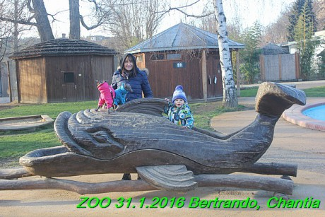 ZOO 31.1.2016 Bertrando a Chantia (25)