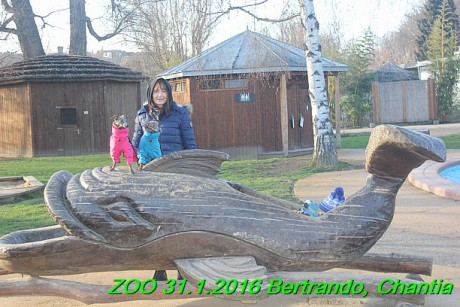 ZOO 31.1.2016 Bertrando a Chantia (27)