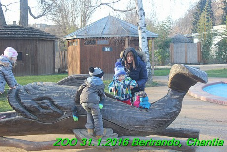 ZOO 31.1.2016 Bertrando a Chantia (28)