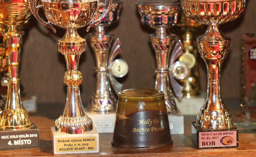 trofeje-2017--40-.jpg