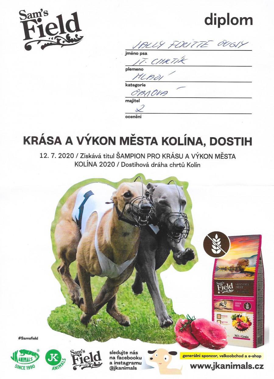 sally-feritte-bugsy-ch.-krasa-a-vykon-mladi-kolin-20200004.jpg